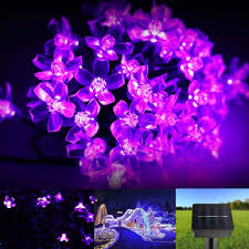 Solar Powered Outdoor Fairy Lights by Le Solar Fairy String Lights 7 Meters 50 Leds Waterproof