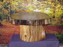 tree trunk end table how to make a tree stump end table bucketforks info