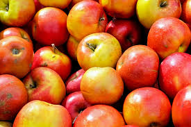 free picture red apple food diet delicious colorful