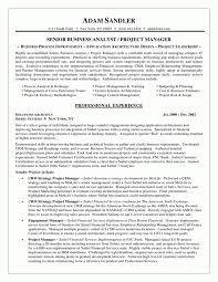 Sample Of Business Analyst Resume by Example Of Business Analyst Resume Samples Of Resumes