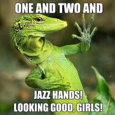 Lizard Meme - lizard memes your own ridiculously photogenic lizard meme