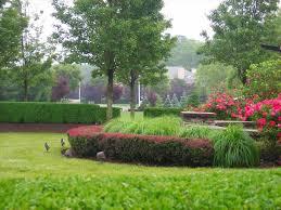 landscaping ideas flat backyard articlespagemachinecom
