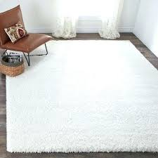Shag Carpet Area Rugs Fuzzy Area Rugs White Fuzzy Rug Cozy Plush White Shag Rug