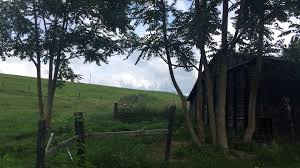 country backyard oasis camping