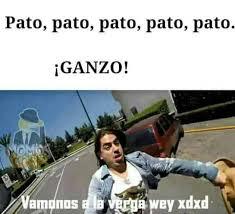 A La Verga Meme - dopl3r com memes pato pato pato ganzo vamonos a la verga wey