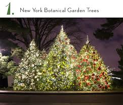 7 trees to see in new york city the rockettes
