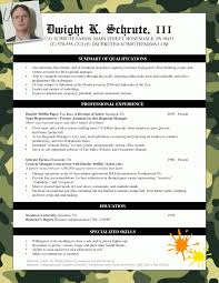 bad resume examples best business template