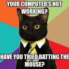 You Tried Meme - business cat your computer s not working have you tried batting