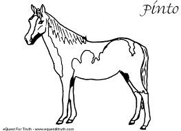 9 images of big horse coloring pages free printable horse