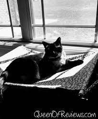 luxury cat hammock strong and sturdy with easy installation by