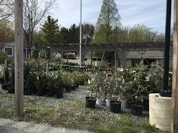 plant nursery from east earl opens in malvern chestercountyramblings