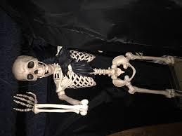 Skeleton Decoration Halloween Decorating Halloween Mr Skeleton Holiday Halloween Pinterest