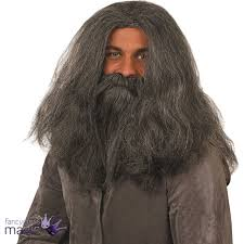 halloween costumes beards grey wizard wig and beard fancy dress old man hagrid caveman