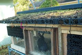 Rabbit Hutch Plans Kevin Songer Green Roof Design On A Rabbit Hutch Urban Permaculture