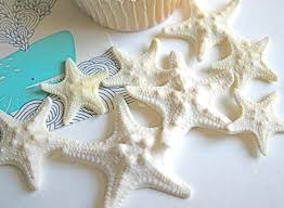 starfish decorations edible mini armored starfish cake topper cake embellishment