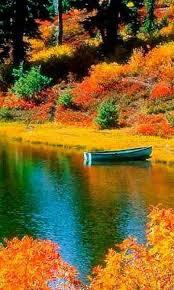 773 autumn magic images
