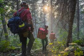 Bc Wildfire Weather by Bc Views Notes From The Forest Fire Zone Surrey Now Leader