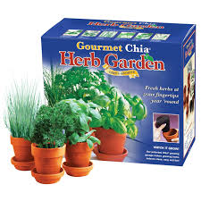 amazon com chia gourmet herb garden plant germination kits