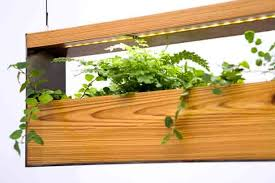 Hanging Planter Boxes by Hanging Garden Lamps Green Up Interiors Urban Gardens