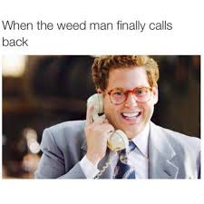 Funny Stoner Memes - the best high memes on the web