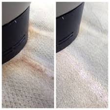 miami upholstery cleaners 42 photos 52 reviews carpet cleaning