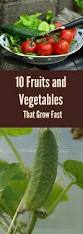 fruits and vegetables that grow fast jpg