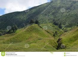 savanna u0026 teletubbies hill mount bromo indonesia stock photo