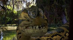 film ular phyton heboh ular makan manusia inilah 5 film bertema ular bookmyshow