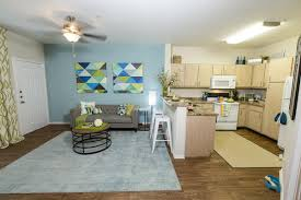 the element at university park apartments for rent in bryan tx