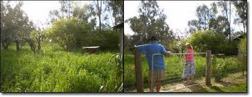 how to build a permaculture vegetable garden the permaculture