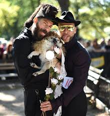 costumed dogs take over tompkins square park for annual halloween