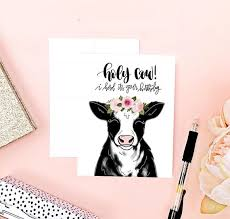 cow greeting cards cow birthday card birthday card cow punny