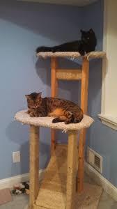 Cat Trees For Big Cats Cat Tree Carpet Sisal Carpet Vidalondon