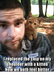 Meme Chip - visitor ireplaced the chip on my shoulder with a kitten now we both