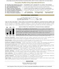 resume format for supply chain executive doc 704910 healthcare executive resume sample resume healthcare executive resume samples healthcare executive resume