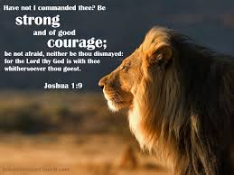 god promise strength for the day comfort for the tears and light