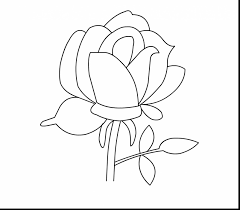 astonishing drawing hearts and roses coloring pages with rose