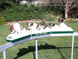 Backyard Monorail Monorail Modeling Page Puppy Mover