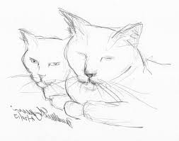 easy animal sketches in pencil drawing of sketch