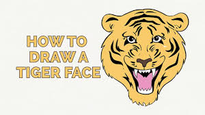 how to draw a tiger face easy step by step drawing tutorial for