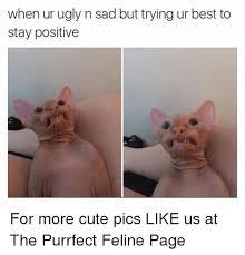 Meme Sad - that sad feeling memes