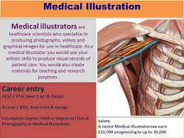 Human Anatomy Careers Ernest Bevin Art Department Careers In Art And Design