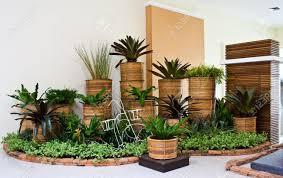 Indoor Garden by Indoor Garden For Room Corner Decoration Stock Photo Picture And