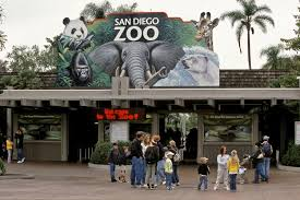 San Diego Safari Park Map by 12 Awesome Day Activities In San Diego That You Must Do With Kids