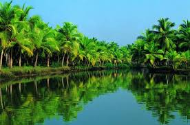 7 days in kerala approx expense in travelling Kerala Forum