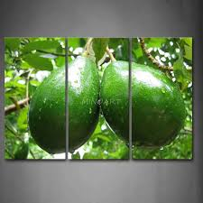 Prints For Home Decor 3 Piece Wall Art Painting Green Avocado With Water Drop Print On