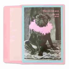 black pug with boa funny birthday cards papyrus