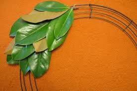 magnolia leaf wreath diy magnolia leaf wreath handmade grace