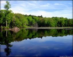 Rhode Island lakes images Hopkinton ri trails walks in rhode island jpg
