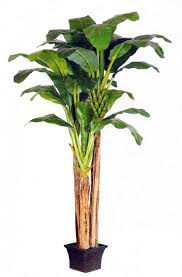 artificial banana trees for the home